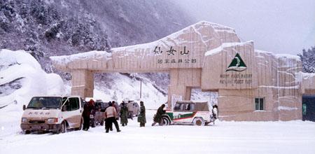 重庆武隆仙女山旅游,仙女山、天生三桥、芙蓉洞3个点二日游